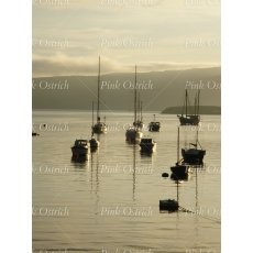 boats on water 1
